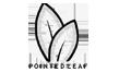 Pointed Leaf Press